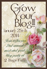 GrowYourBlog2014-180.jpg~original